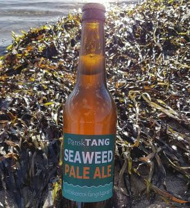 Seaweed beer at the beach